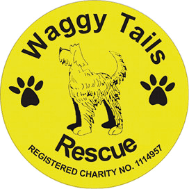 waggy tails charity
