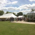 Finch Cricket Reception