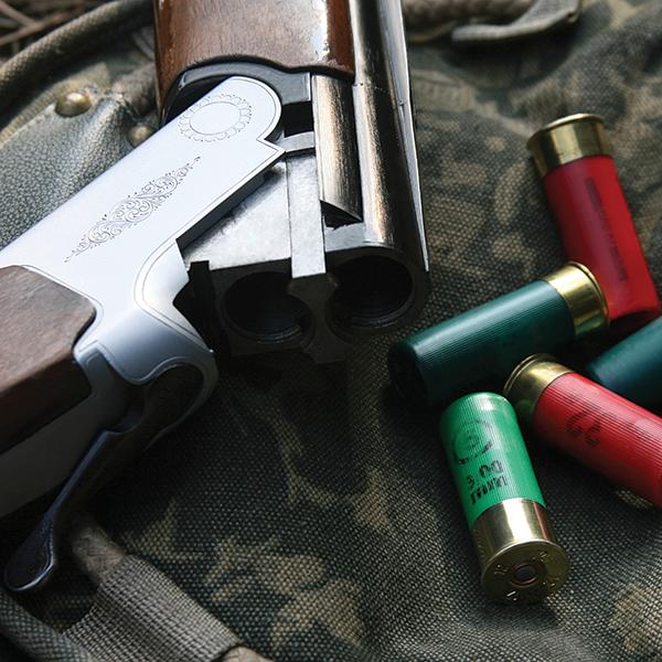 gun trade insurance